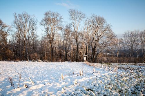 Wiese und Jägerstand im Schnee